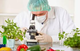 Introducción a la tecnología de alimentos